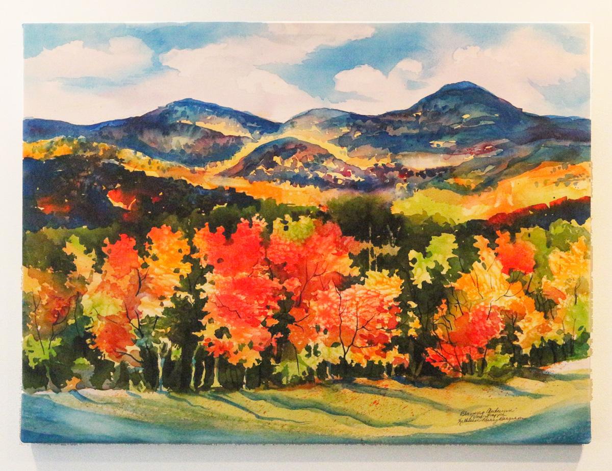 Canvas print of Von Trapp Meadow