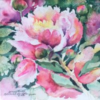 Spring Peony by Kathleen Berry Bergeron